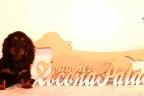 Puppies Zorka 9 weken Bella 4 weken 546-1