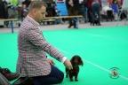 Dogshow Bleiswijk 2017 dag2 1-049