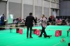 Dogshow Maastricht 2 dagen 2017 1 - 372