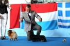 San Marino dogshow 2017 1-319