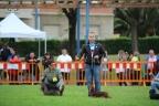 Int. Hondenshow Portugalete 2014 432