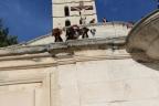 Hondenshow Avignon 2014-St Tropez 733