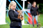 Hondenshow Limburgia 2017 035n