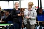 Hondenshow Limburgia 2017 252n